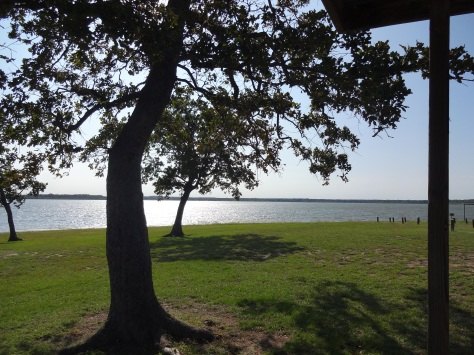 Lake Somerville Picnic Area